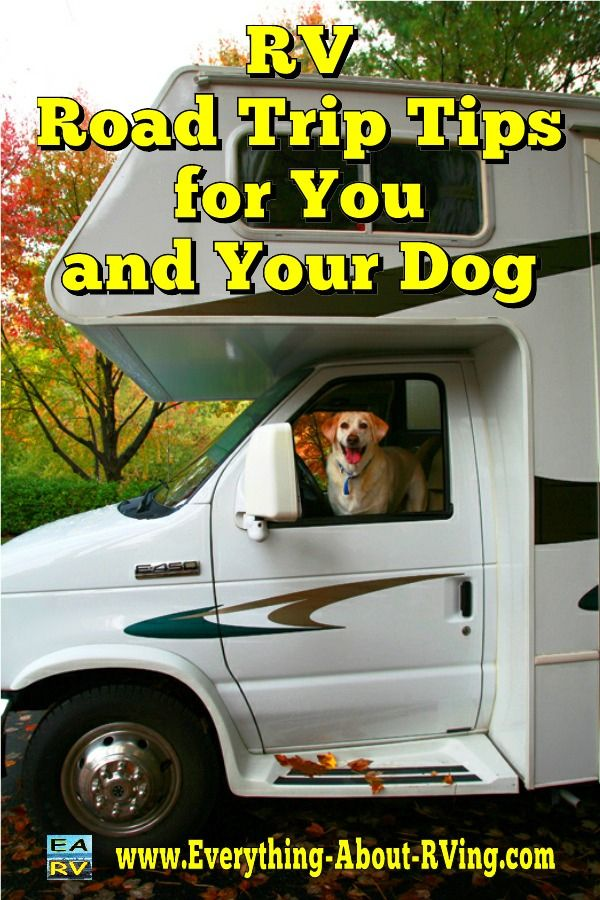 RV Road Trip Tips for You and Your Dog: