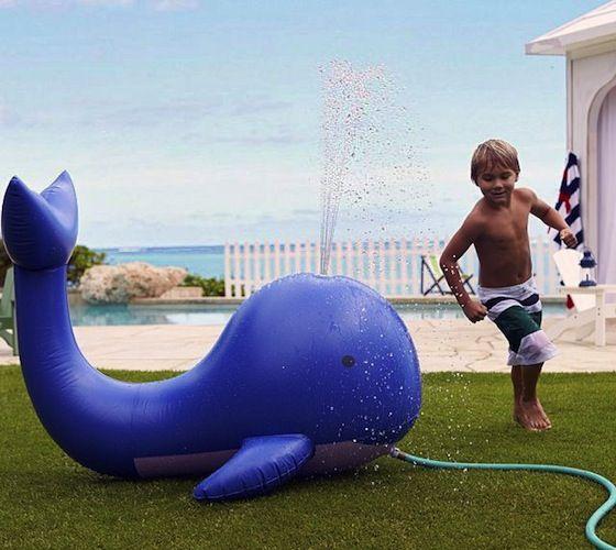 Whale Sprinkler – $35