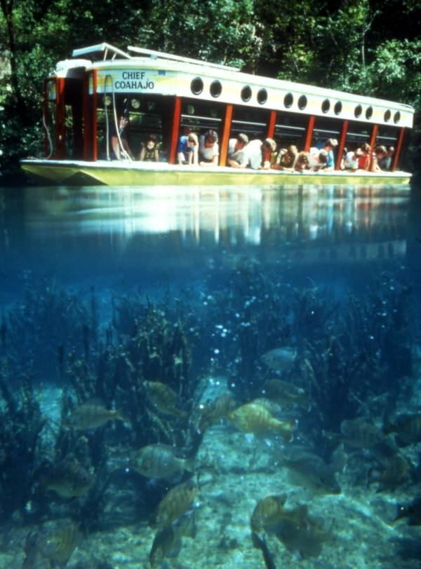 """Visitors aboard the """"Chief Coahajo"""" glass-bottom tour boat at the Silver Springs attraction in Ocala, Florida."""