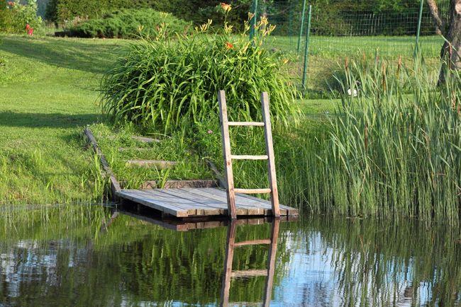 Un anti Beurk. Des piscines naturelles émergent en France  La commune de Clubize vient de s'offrir la plus grande piscine naturelle d'Europe. En France ces bassins naturels s'intègrent de plus en plus dans le paysage. Plus besoin de chlore ou de produits chimiques. La flore et la faune se chargent de nettoyer l'eau.