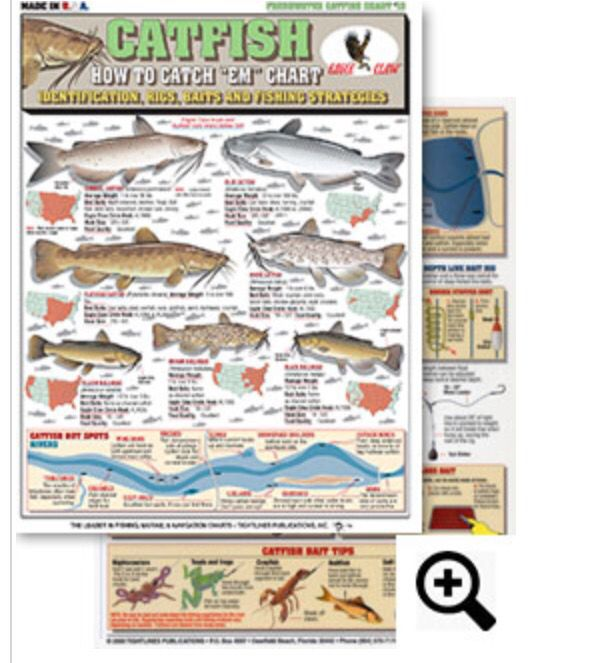 How to catch em freshwater chart 13 contains for Best bait for freshwater fishing
