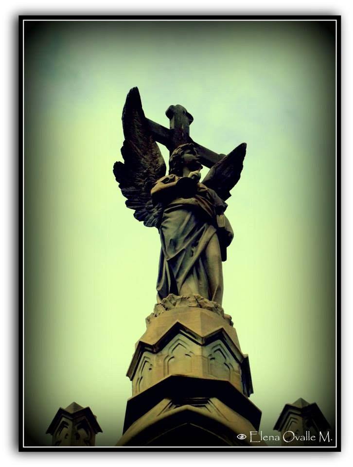Cementerio General  Santiago-Chile (Derechos:Elena Ovalle M.)