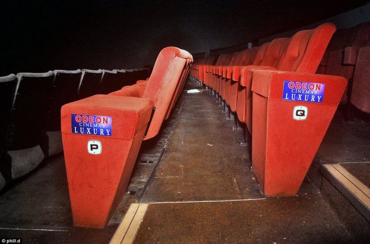 Luxury: Rows of empty seats inside the Bradford Odeon, which has been offered for sale to Bradford City Council for the sum of £1