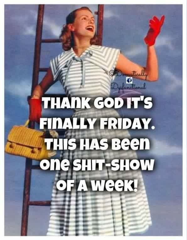 Finally Friday Funny Meme : Best tgif week end warriors images on pinterest