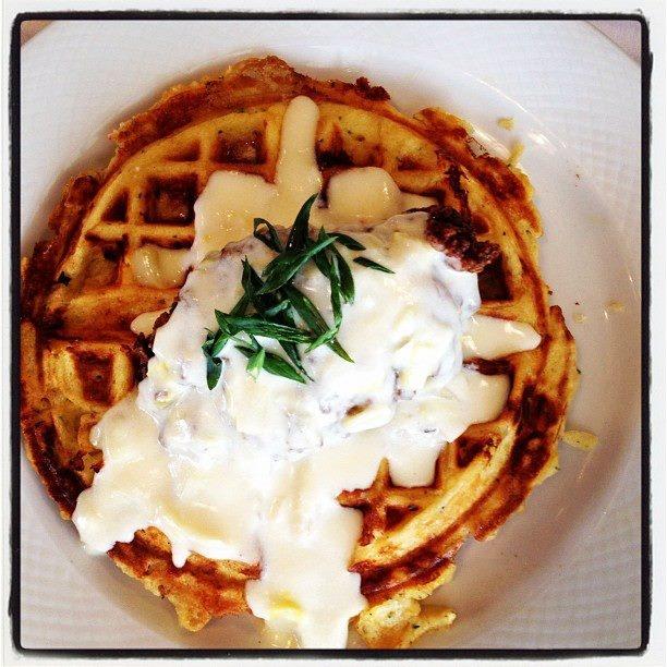 ... Apple Cheddar Rosemary Waffle, Creamy Leek Gravy...Oh my