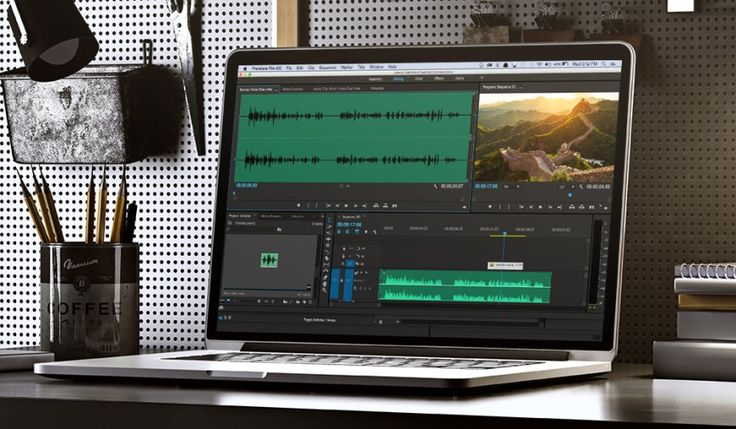 how to delete audio from video in premiere