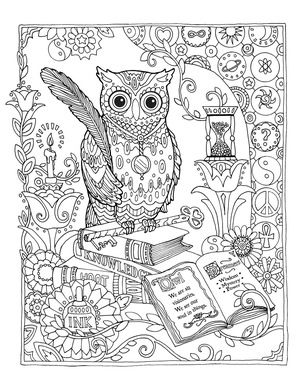 Creative Haven Owls Colouring Book by Marjorie Sarnat ~ library owl