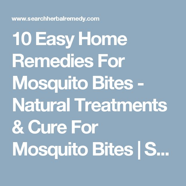 10 Easy Home Remedies For Mosquito Bites - Natural Treatments & Cure For Mosquito Bites | Search Herbal & Home Remedy