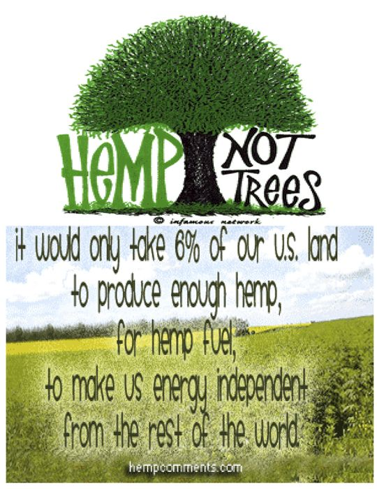 hemp   Obama Wants More Green Jobs? Let's Start with Hemp