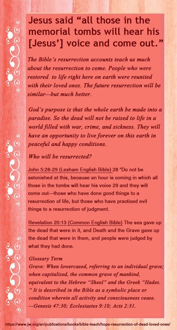 956 best truth images on pinterest bible studies bible truth the resurrection real hope for your dead loved ones biocorpaavc