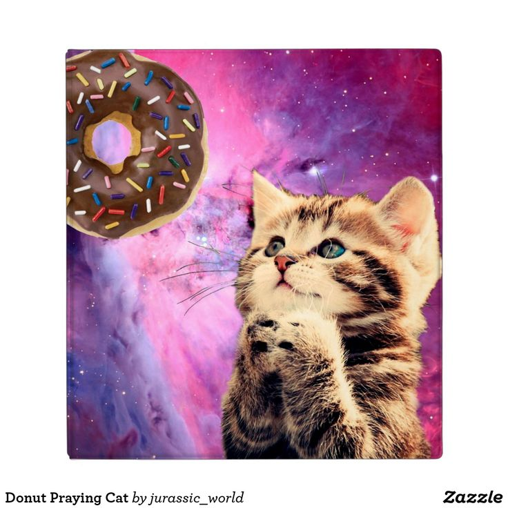 "Donut Praying Cat Binder cat ,""praying cat "",""cat praying"" ,""cat donut"" ,""cool kitty"" ,""kittens in space"" ,""cat purple"" ,""cosmic cat"",""cat galaxy"" ,""donut cat "",pussy ,star ,cats ,beautiful ,galaxy ,funny ,space ,animal ,stars ,cosmos ,cute ,kittens ,pet ,purple ,kitty ,kitten ,nebula ,universe ,donut ,meow ,constellation ,artwork ,cosmic ,feline ,""space cat"" ,""into space"" ,""meme cat"" ,""in space """