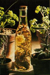 Learn how tomakeherbvinegarfor herb-infused,flavored salad dressings and more. Originally published as