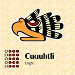 Aztec calendar symbols - Cuauhtli or eagle (15) by sahua d, via Shutterstock