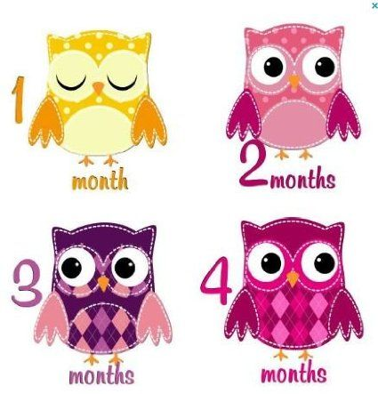 Amazon.com: Monthly Stickers Baby Month Stickers Baby Girl Monthly Stickers Girl Baby Monthly Stickers Girl Patchwork Owls Monthly Stickers ...