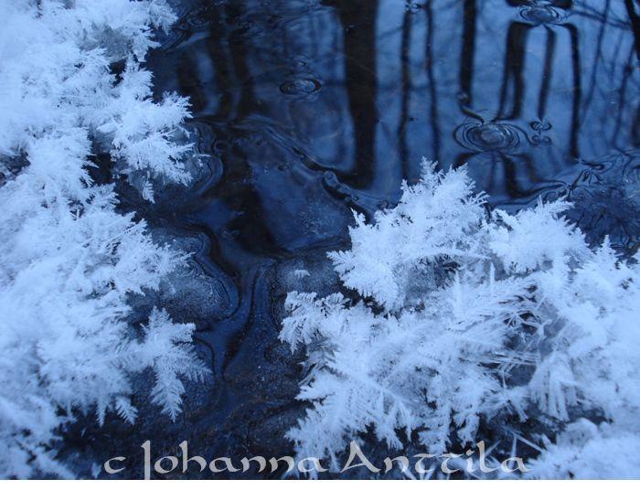 Kuurankukkia. Ice is so beautiful.