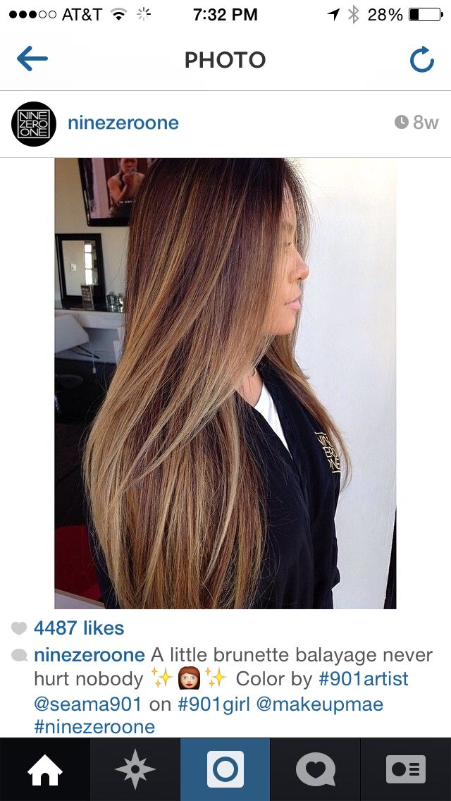 901 brunette with blonde highlights