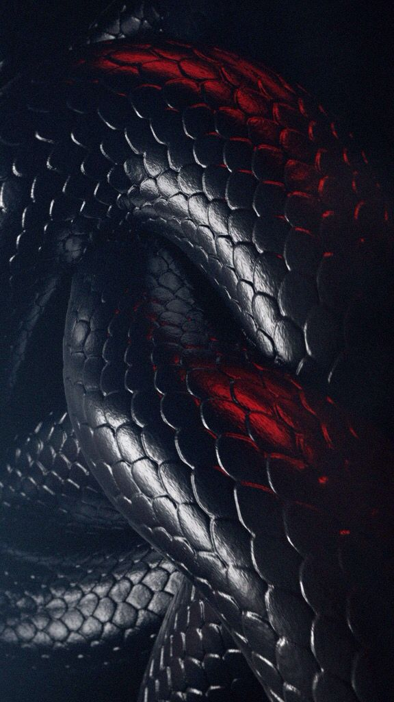 Pin By Wallpapers Phone Pad Hd On 9 16 Phone Snake Wallpaper Snake Art Cool Backgrounds Black mamba hd wallpaper