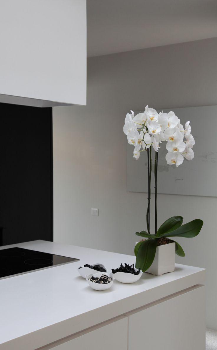 Glamour para tu cocina con un elegante arreglo floral.   www.florama.mx