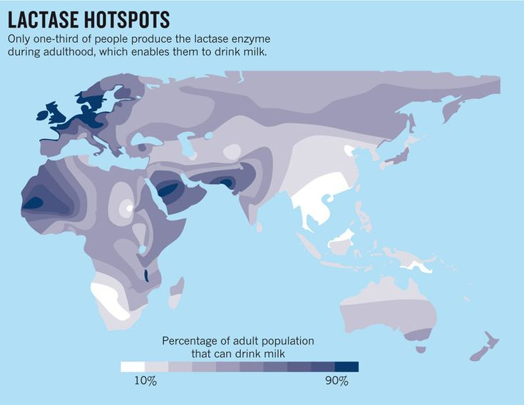 """""""Most people who retain the ability to digest milk can trace their ancestry to Europe, where the trait seems to be linked to a single nucleotide in which the DNA base cytosine changed to thymine in a genomic region not far from the lactase gene."""""""