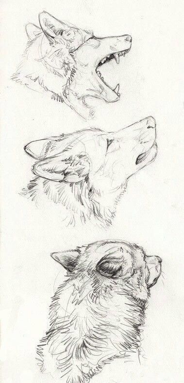 60+ SIMPLE PENCIL DRAWING SKETCH EXERCISE – Page 27 of 61
