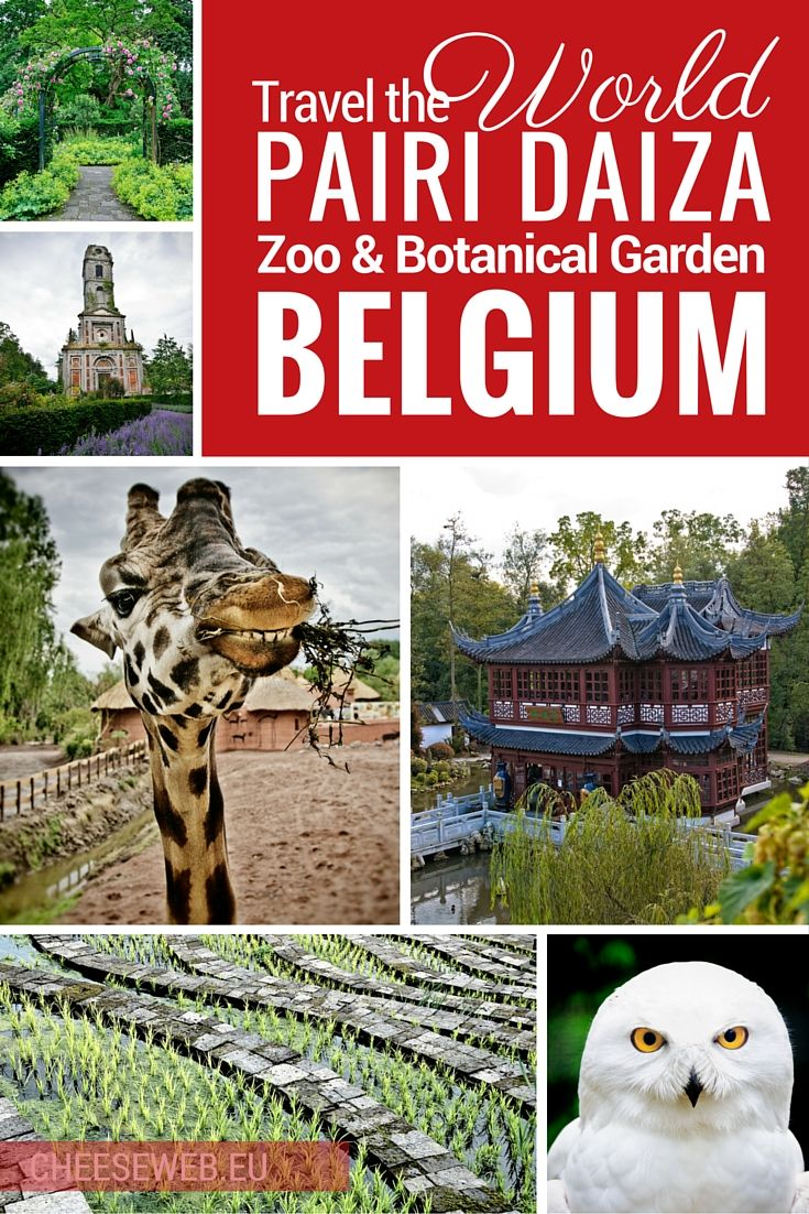 Travel the world at Pairi Daiza zoo and botanical garden in Wallonia, Belgium