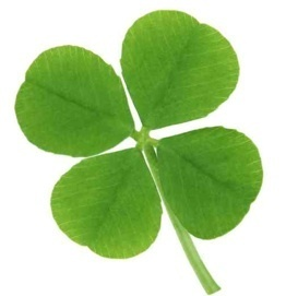 4 Leaf Clover  A HEALTHY ST. PATRICKS DAY!