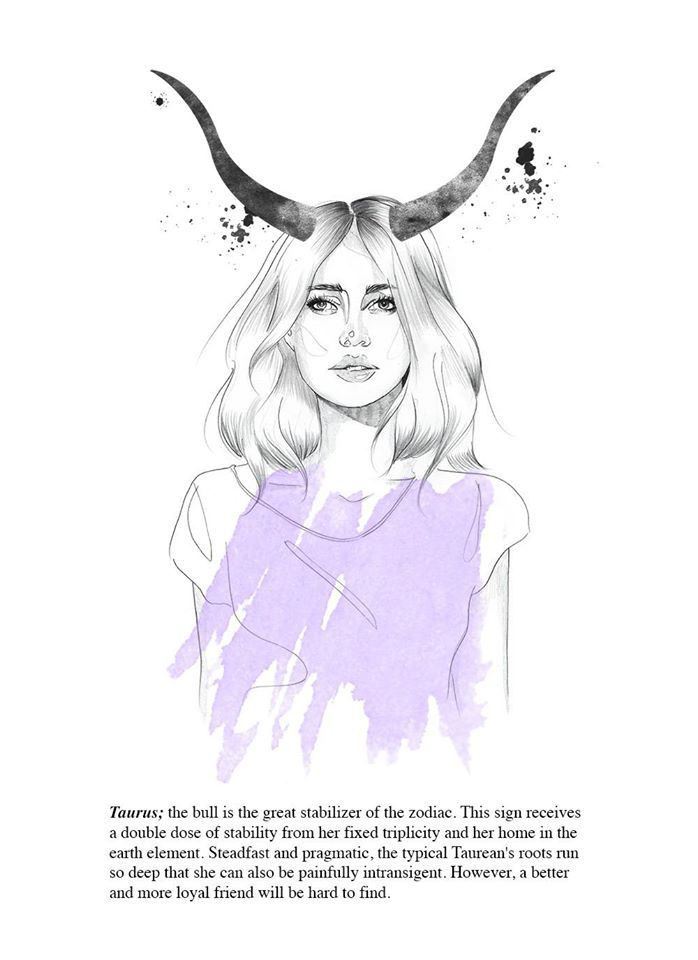 Image result for taurus art zodiac