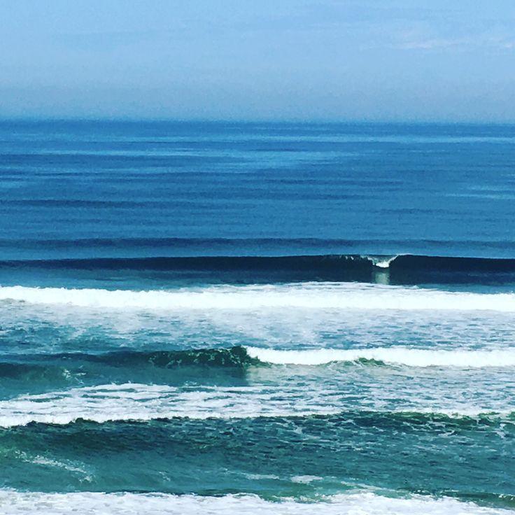 When dreams come true just surf it!