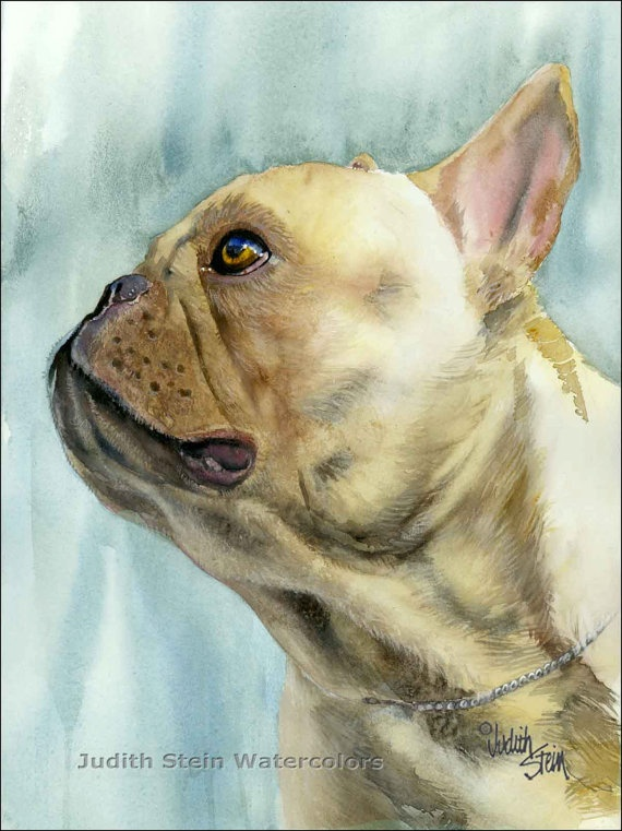 FRENCH BULLDOG Frenchie Dog 15x11 Giclee Watercolor Print