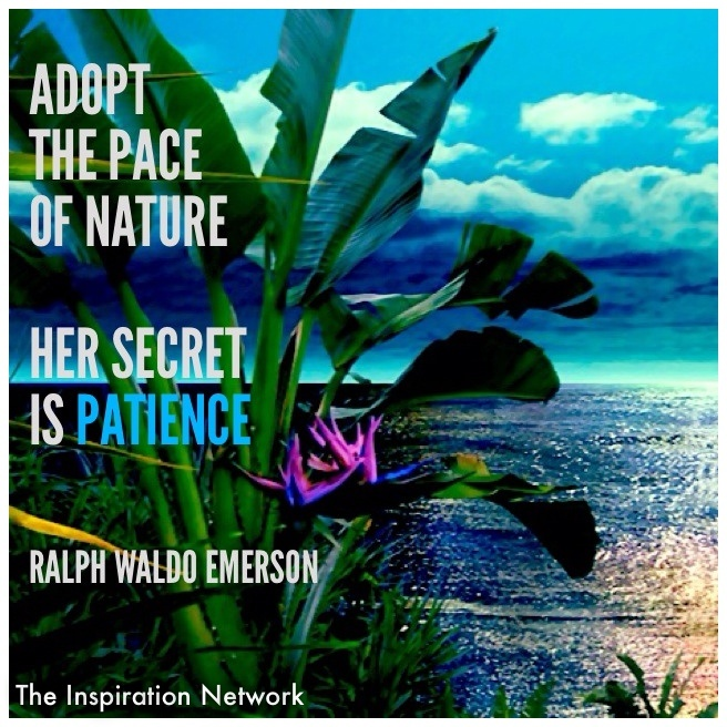 Emerson Nature Quotes: 50 Best Images About Ralph Waldo Emerson Quotes On
