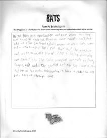 Bat Theme Day - Facts about Bats Worksheet: Free Printable