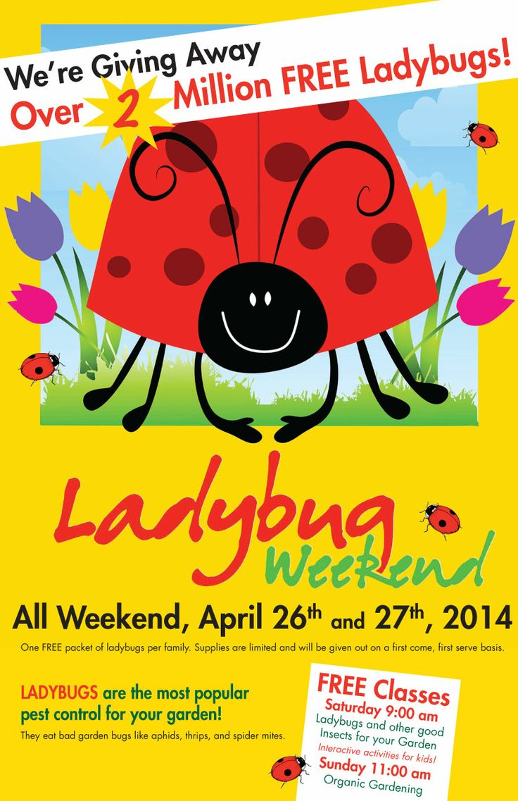 21 best ideas about Ladybugs and other good garden bugs on