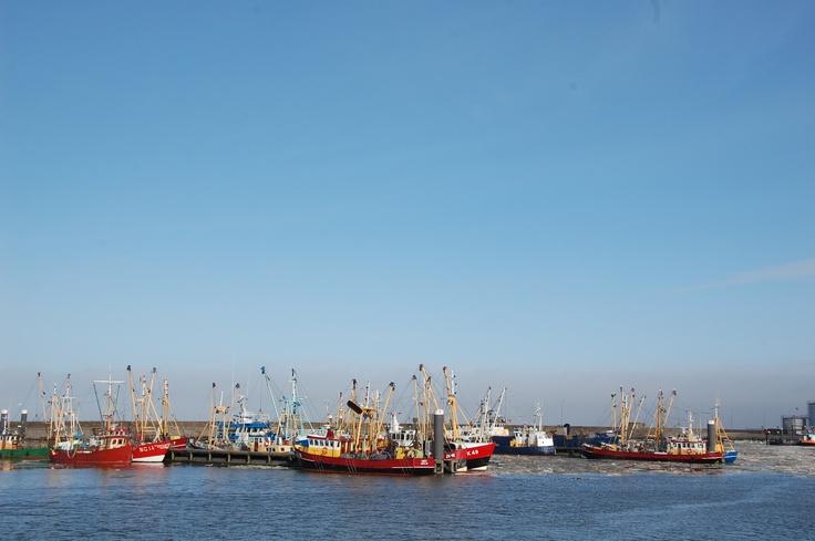 Vissersschepen in Lauwersoog. Foto: Marco in 't Veldt