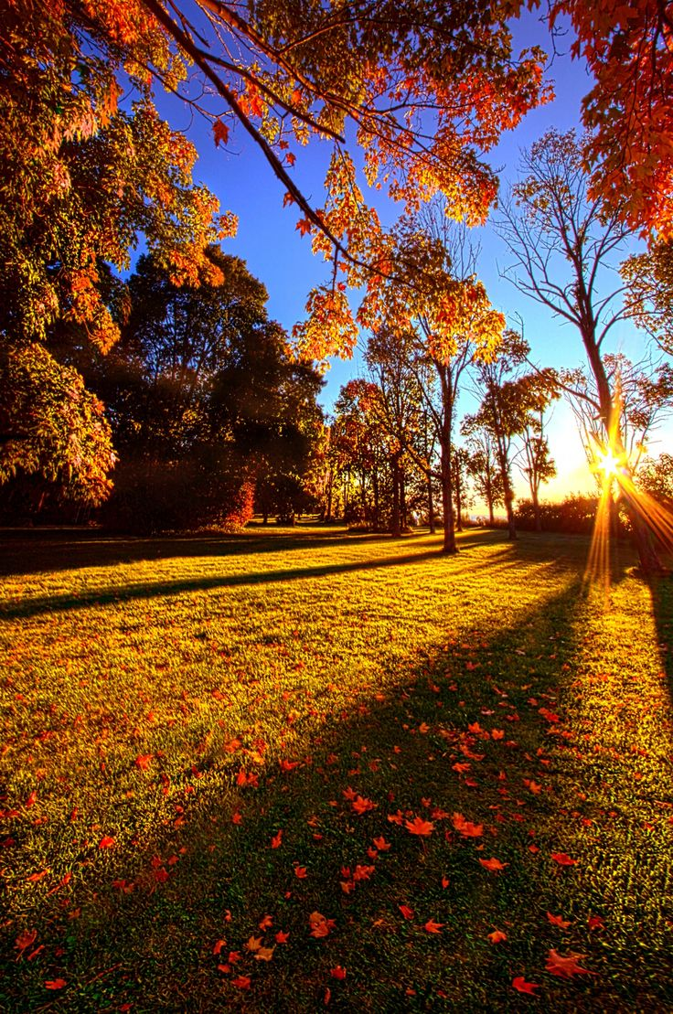 First Day of Fall by Phil Koch on 500px