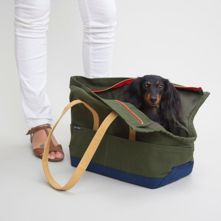 Canvas Pet Tote Olive & Navy - Dog Carrier by LoveThyBeast on Etsy https://www.etsy.com/listing/187110956/canvas-pet-tote-olive-navy-dog-carrier