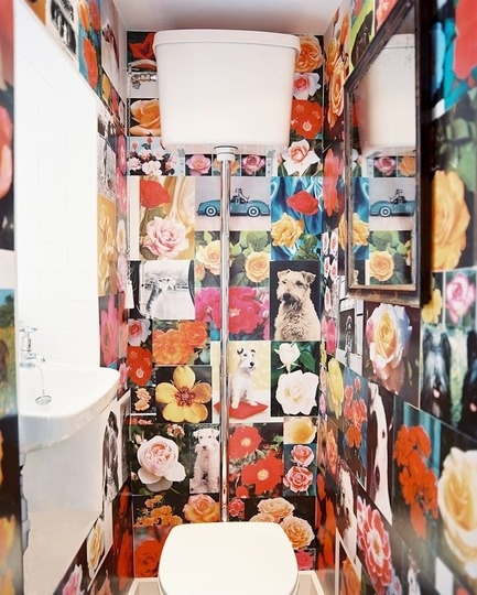 Something about this space just keeps drawing me in to look at it again and again. It's not my usual style, but I can't help but like it anyway. Must be the pics of cute dogs... and the pops of orange don't hurt either.