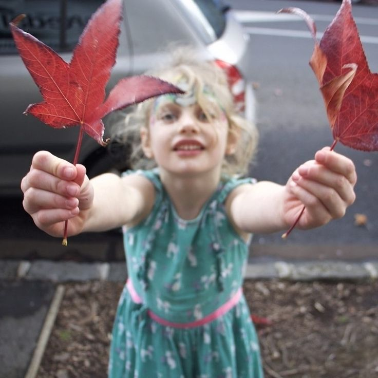 eardrops_🍁There's still a bit of autumn colour floating about in Auckland 💚Liz xx www.eardrops.co.nz #realworldsounds #audiostoriesforchildren #learningthroughlistening