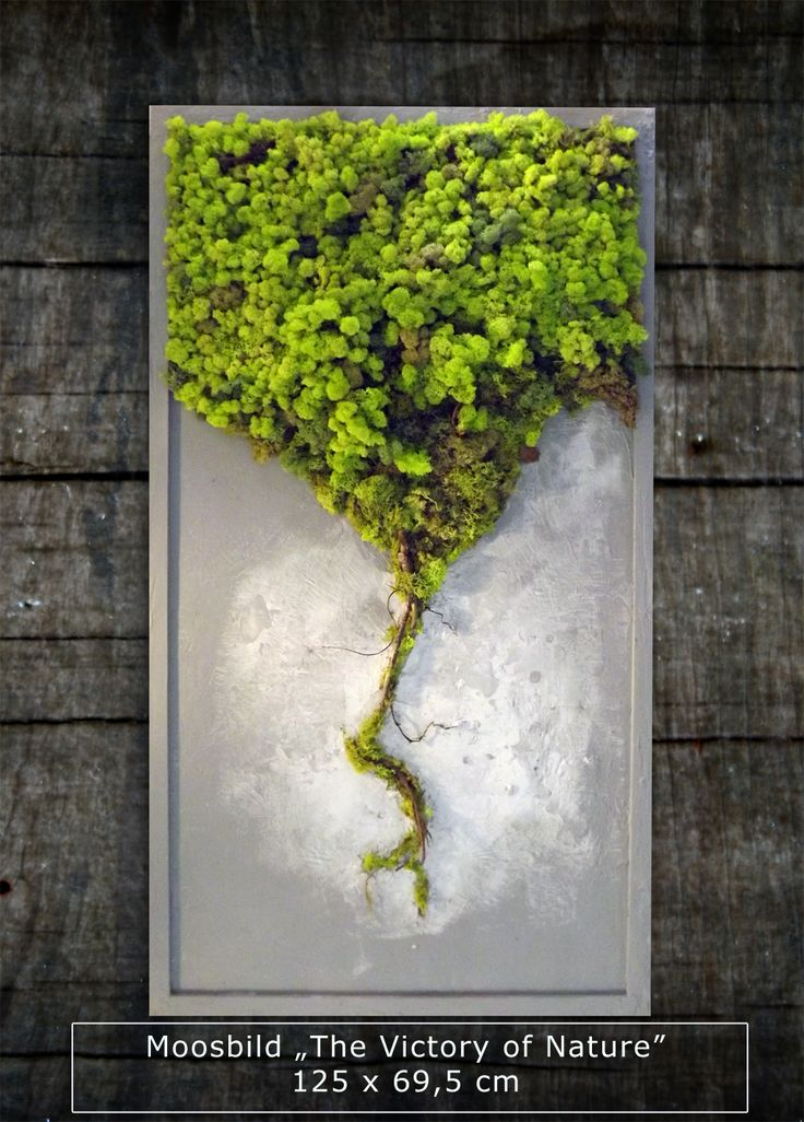 """""""The Victory of Nature"""" 125 x 69,5 cm Natural moss picture by GreenAlleys See more at www.greenalleys.pl"""