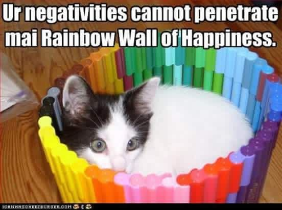 Funny Rainbow Meme : Funny rainbow meme space help messages butts stupid troll face i