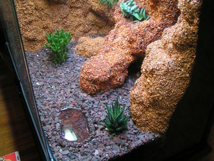 leopard gecko terrarium expanding foam aquarium gravel. Black Bedroom Furniture Sets. Home Design Ideas