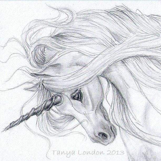Gray Unicorn whispwan Graphite drawing | My Fairytail Life ...