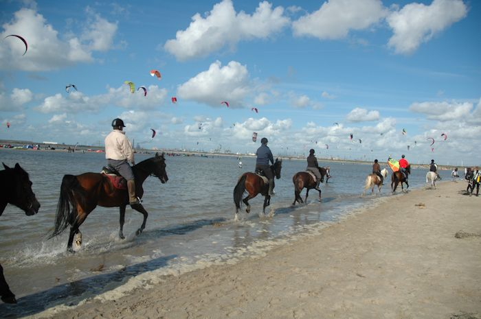 Beach at Oostvoorne (Netherlands) with horse riders and kitesurfers