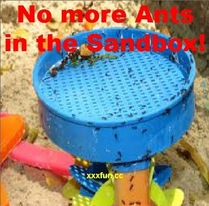 Mix Cinnamon Powder with the Sand, Ants and Bugs are gone!