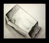 Paper Bag Study-  1.Set a paper bag in front of you to draw from  2. add values