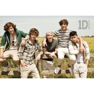 #9: Music - Pop Posters: One Direction - Summer - 23.8x35.7 inches: Summer Posters, 1Direct Infection, Direction Infection, Pop Posters, One Direction, Liam Payne, Bands Posters, Direction 3, Harry Style