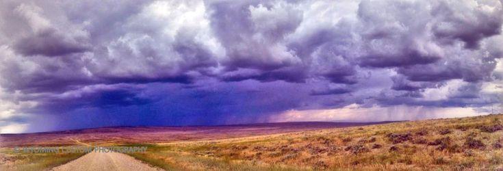 Smokey Gap Road, Kaycee Wyoming by Carole Martinez
