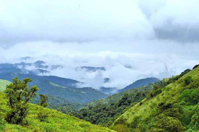 'The #Scotland of India' because its misty, mountainous views, #Coorg - a hill station in Karnaraka - is ideal for #trekking. Coorg offers all kinds of terrain for trekking lovers. So here are 3 not-be-missed trekking trails.. https://www.tripoto.com/trip/get-high-in-coorg-with-these-amazing-treks-57e1178e8bc80