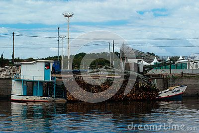 Tigre Boats