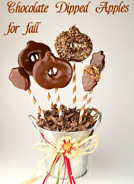 {Tutorial Feature} Chocolate Dipped Apples for Fall