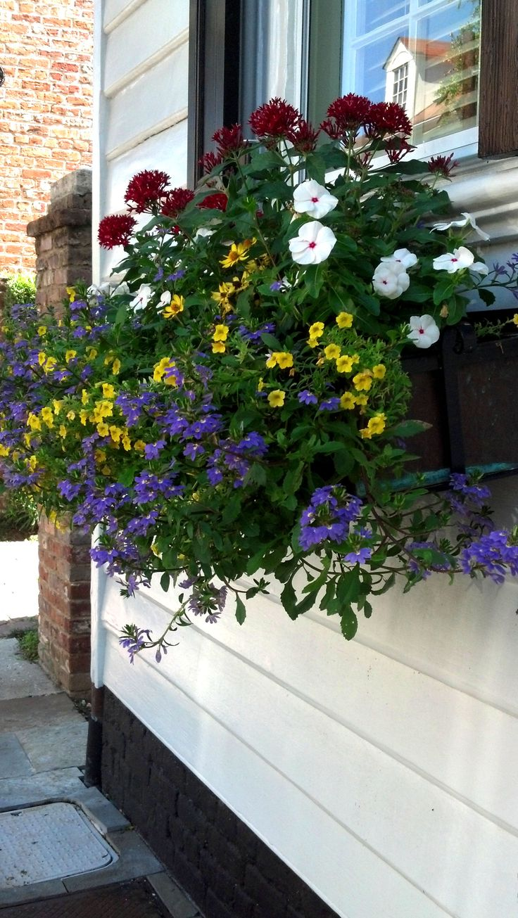 Charleston SC Flower Box